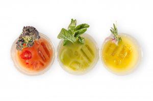 Vegware PLA bioplastic biodegradable compostable plastic